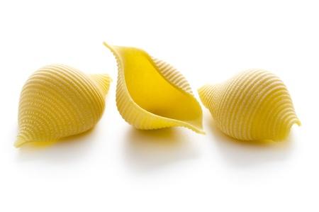 pasta isolated: conchiglioni pasta shells dried uncooked