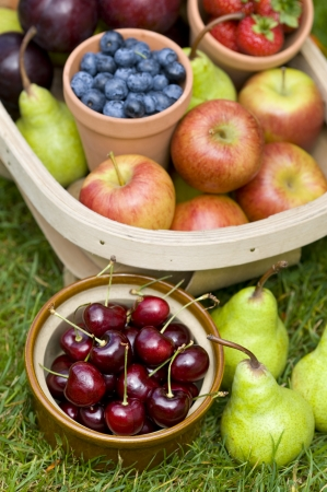 trug of harvested summer fruit including: blueberries, cherries, apples, pears, strawberries, plums photo