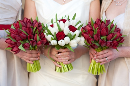 bridesmaids: bride and bridesmaids holding red tulip wedding bouquets