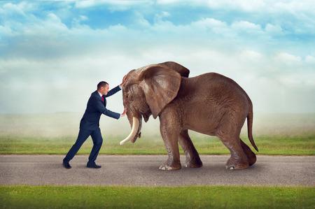 hombre fuerte: reto empresarial empujando contra concurso obstáculo elefante de la fuerza Foto de archivo