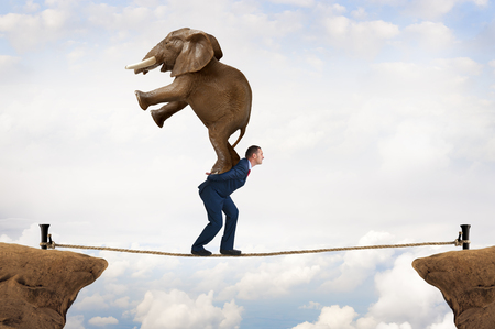 business challenge: business challenge concept businessman carrying an elephant across a tightrope chasm Stock Photo