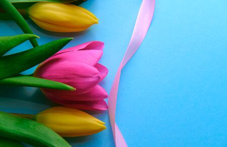 colourfull flowers with pink ribbon on blue background, copyspace, postcard, label concept, blank space left for text right