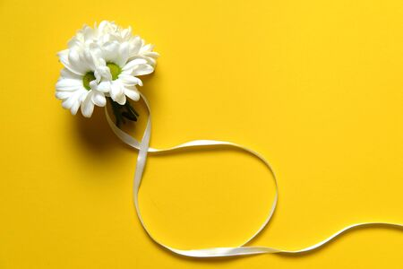 Symbols of offer of marriage, man proposal objects on yellow, spring blossom 写真素材
