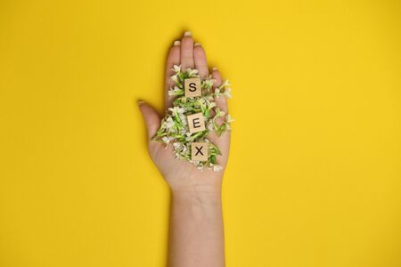 Woman hand holding three wooden blocks - letters SEX on them, flowers underneath them, blue background, space for more text images
