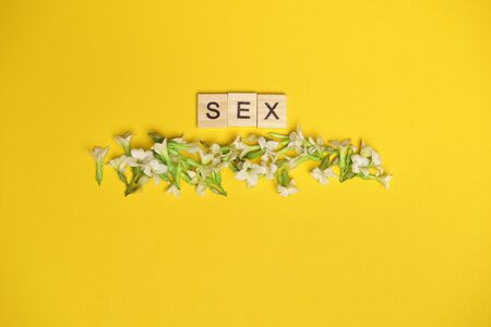 three wooden blocks - letters SEX on them, space for more text images.