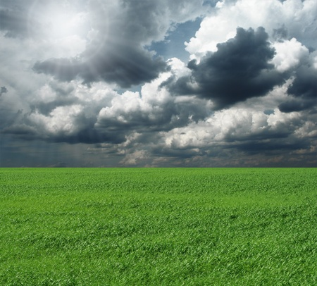 green grass and blue cloudly sky with sun Stock Photo - 8992956