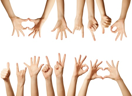 hands raised: many human hands isolated on white background