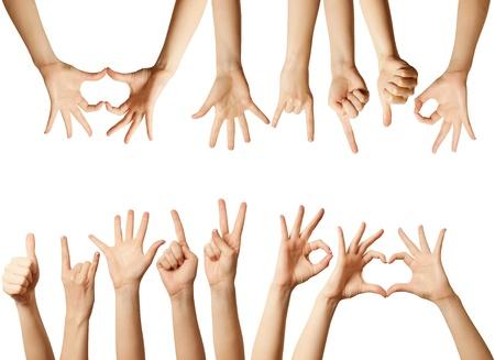 silhouette lapin: nombreuses mains humaines isol�es sur fond blanc