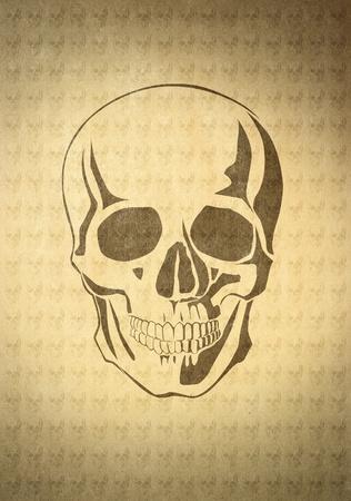 skull on beige old paper photo