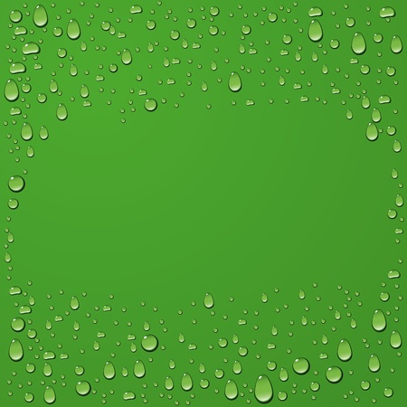 vector water drop on green summer background  Vector