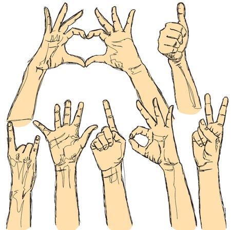 cuore nel le mani: set vettore di molte mani umane su sfondo bianco Vettoriali