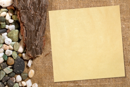 Sea concept background with empty paper, stones and shells photo