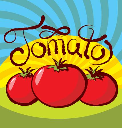tomato: vector tomato with calligraphic inscription