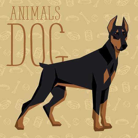 pinscher: Vector geometric dogs collection with seamless background. Doberman Pinscher Illustration