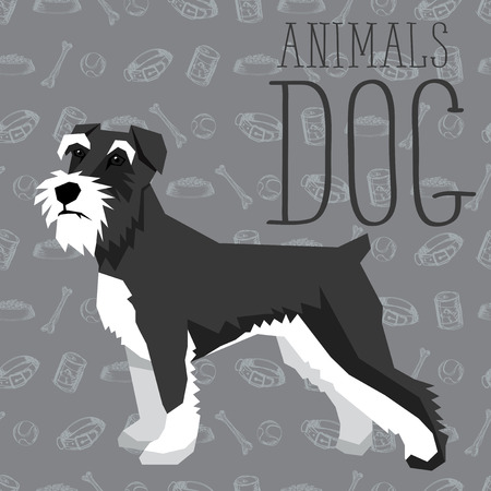 schnauzer: Vector geometric dogs collection with seamless background. Miniature Schnauzer