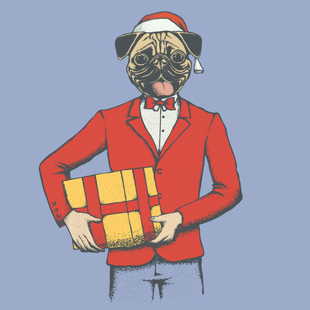 carlin: Christmas Pug dog vector illustration. Pug dog in human suit with santa hat. Adorable Chinese pug dog on New Year with gift