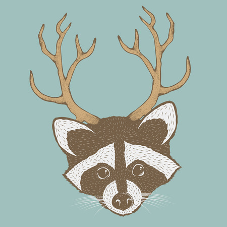 Raccoon vector illustration. Raccoons head isolated. Adorable mammal raccoon vector character