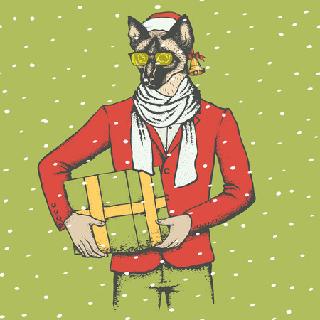 siamese: Christmas cat vector illustration. Cat in human suit with gift. Christmas cat vector in Santa hat