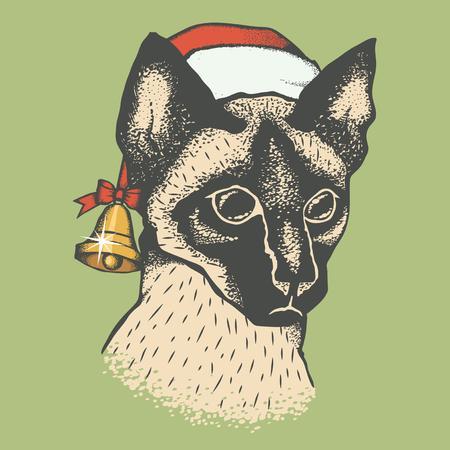 christmas pussy: Siam cat vector illustration. Illustration of cute siamese cat. Christmas cat vector in Santa hat