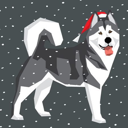 alaskan malamute: Vector polygon dog collection. Dog in Christmas Santa hat. Alaskan Malamute