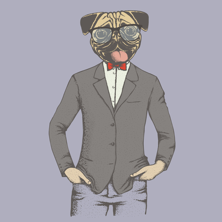carlin: Pug dog vector illustration concept. Pug dog in human suit