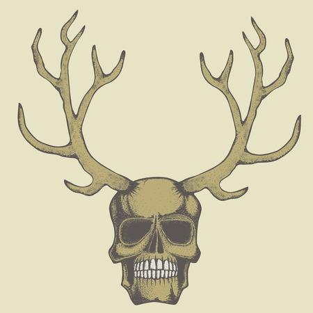 Vector skull with deer horn illustration concept. Hand drawn human skul Illustration