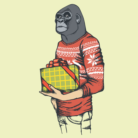 monkey suit: Monkey vector concept. Illustration of African gorilla in human sweatshirt or sweater. Monkey with gift Illustration