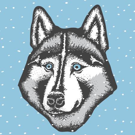 Vector concepto de perro. Mano dibujar la ilustración de vector de perro husky siberiano
