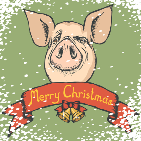 Pig Christmas and New Year vector concept. Illustration of pig head with lettering Merry Christmas Иллюстрация