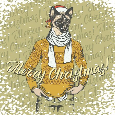 Christmas cat vector illustration. Cat in human wear with gift and lettering merry Christmas
