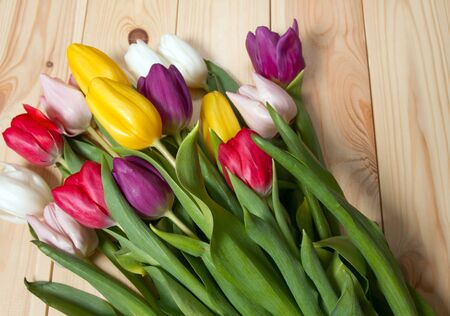 A bouquet of color tulips on the floor. A gift to a women day. Spring tulips flowers background Foto de archivo