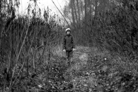 Child Was Lost in the Forest. Little Boy Lost his Way in the Forest. Sad Boy walks through the forest alone