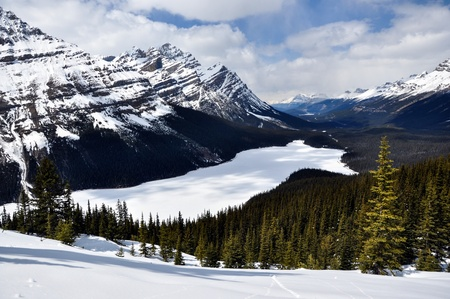 banff national park: Frozen Peyto Lake , Banff National Park, Canada