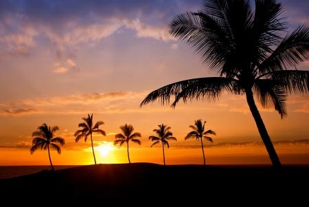 Hawaiian Sunset on Big Island Stock Photo - 13917202