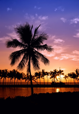 Hawaiian Sunset on Big Island Anaehoomalu Bay photo