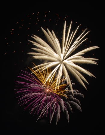Colorful fireworks celebration Stock Photo - 14555795