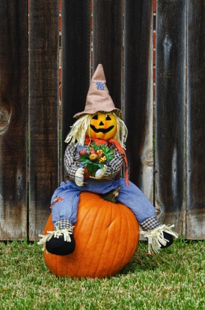 Scarecrow sitting on the pumpkin photo