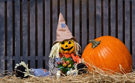 autumn scarecrow: Scarecrow and pumpkin on hay against iron textured bench