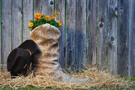 Blooming cowboy boot and hat against wooden fence Stock Photo