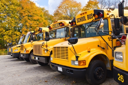 public schools: Yellow school buses