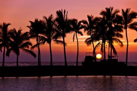 ビッグアイランドのハワイの夕日のシルエット