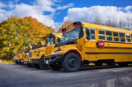 transporte escolar: Línea de autobuses escolares amarillos en un día soleado de otoño