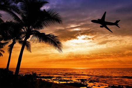 Tropical sunset with palm tree and airplane silhouettes in Hawaii. Travel and vacation concept.  Stock Photo
