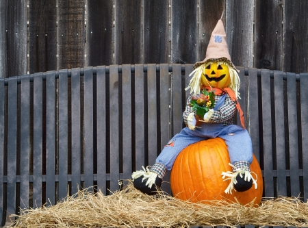 Scarecrow sitting on a pumpkin and hay. Gray iron bench and wooden fence on the background. photo
