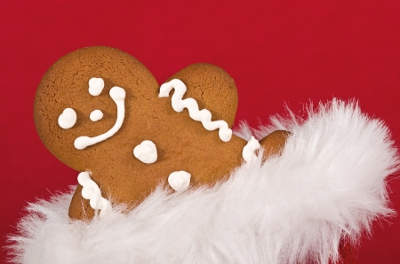 Closeup of gingerbread man cookie peeking out from Christmas gift bag on red background Stock Photo - 20077140