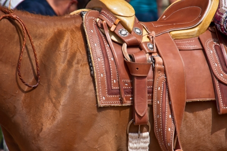 Leather saddle closeup details