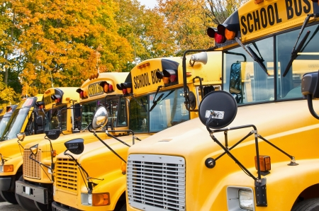 Row of yellow school buses against autumn trees  Shallow depth of field