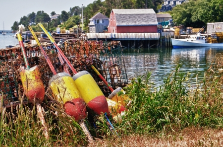 Lobster buoys and traps in a fishing village, Maine photo