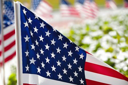 american flags: Fila de banderas de Estados Unidos que aparecen en el lado de la calle a lo largo de flores, close-up con poca profundidad de campo Foto de archivo