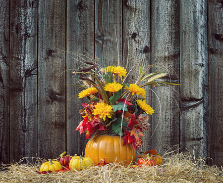 autumn colors: Pumpkin flower arrangement display on hay against rustic wooden background